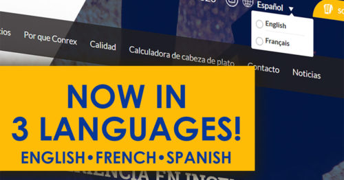 Trilingual Website